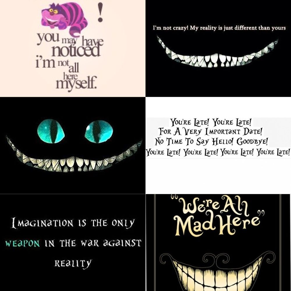 Pin By Catmar S On Alice In Wonderland Alice And Wonderland Quotes Cheshire Cat Quotes Wonderland Quotes