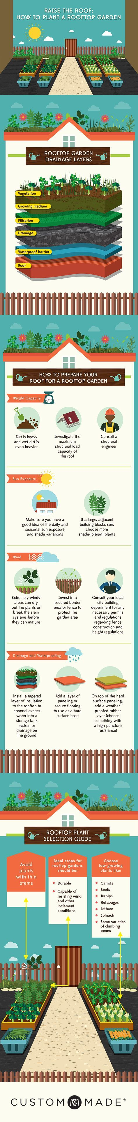How to Plant a Rooftop Garden #rooftopterrace