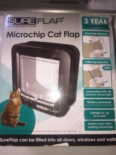 Dog Door Microchip Dog Pinterest Pet Door Cat And Dog Cat