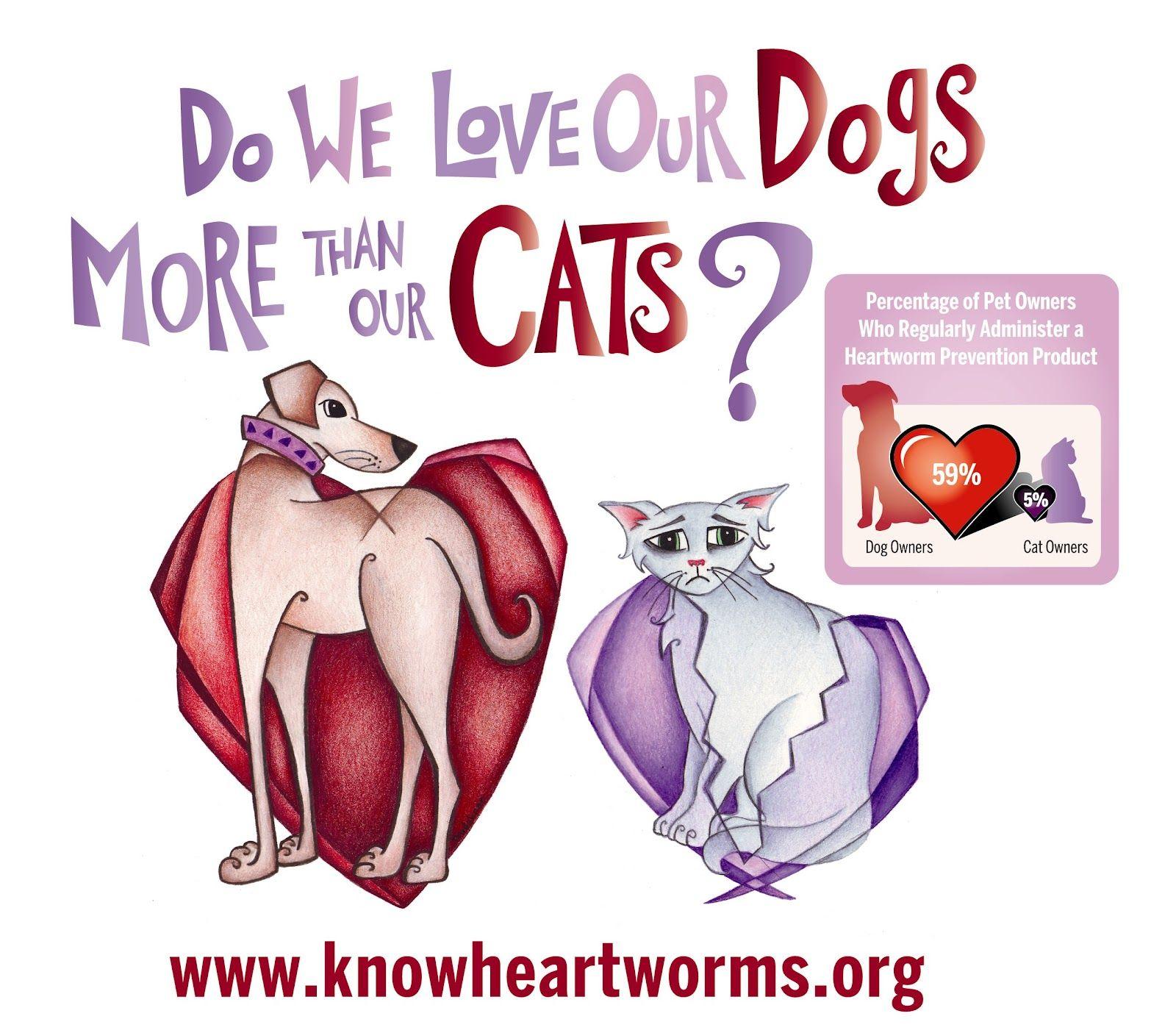 Heartworm disease headaches Heartworm, Heartworm