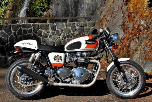 thruxton with bonneville t100 fuel tank, custom decals, custom