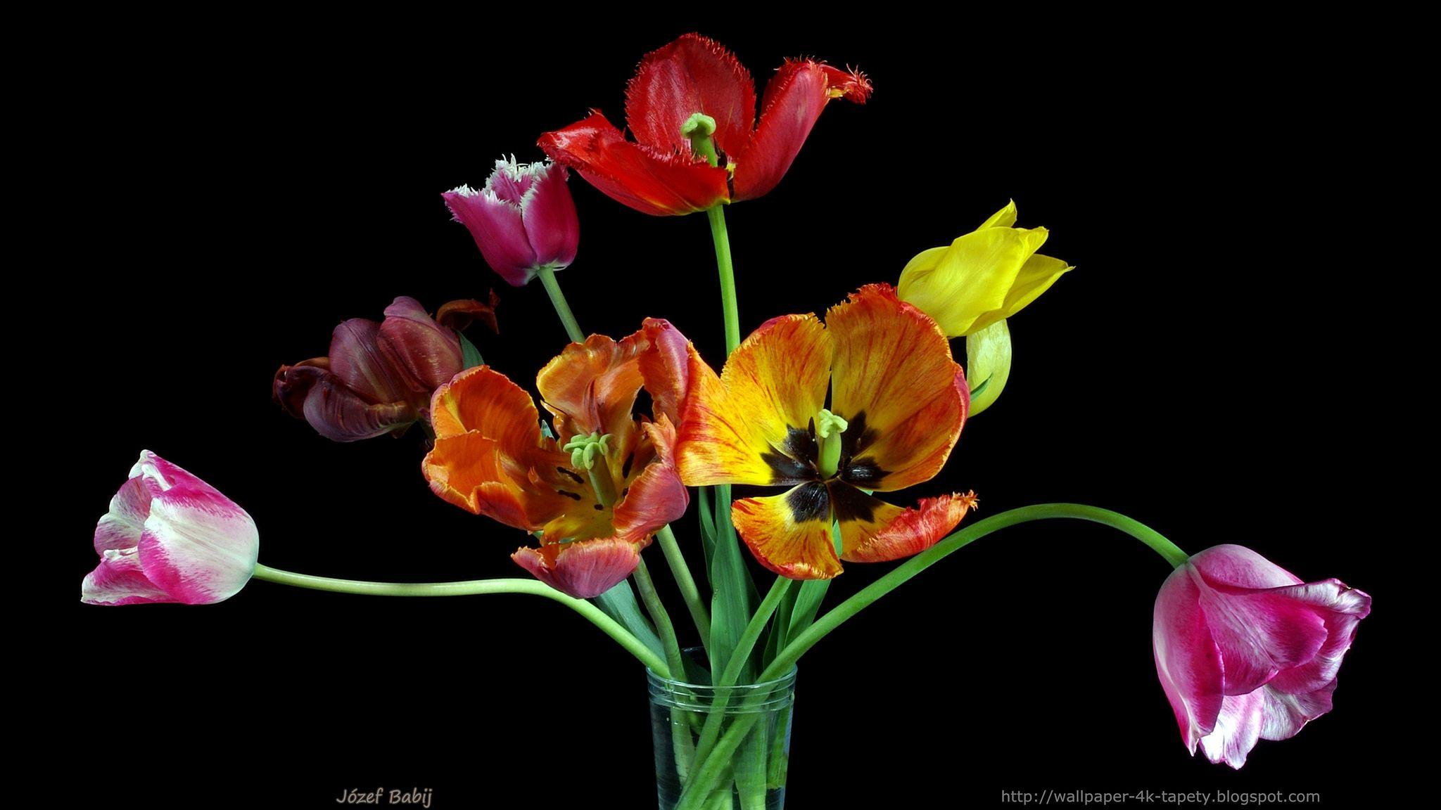 Bukiet Tulipanow Wallpaper 4k 3840x2160 Tapeta 1 Wallpaper Plants