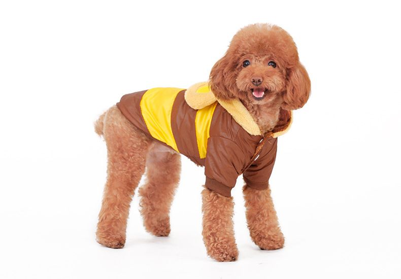 Http Www Lazada Sg Pet Supplies Stripe Clothing Cosplay Bear Funny Clothes For Teddypets Dogs Lovers Brown Stripe Xxl Intl 105 Dog Coats Pets Teddy Bear Coat