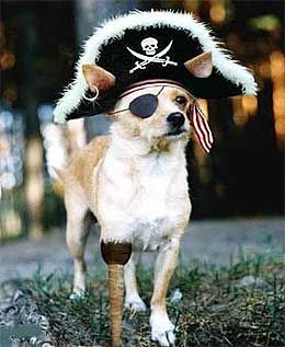 Pirate Sayings Quotes Terms Language Funny Slang Arrrgh With