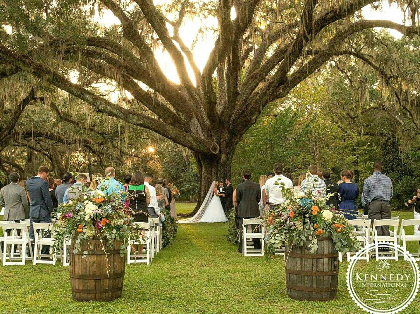 Eden Gardens State Park Oak Tree Fall Wedding Outdoor Wedding Florida R U S T I C W E D D