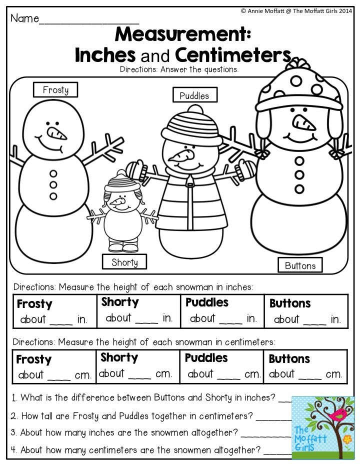 Measurement: Inches and Centimeters- What a FUN way to