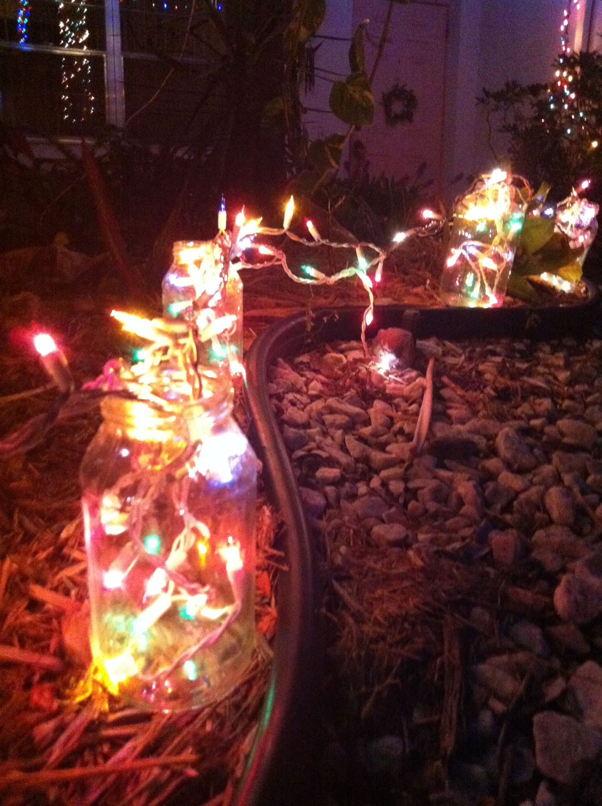 Mason jar Christmas walkway lights holidays Pinterest