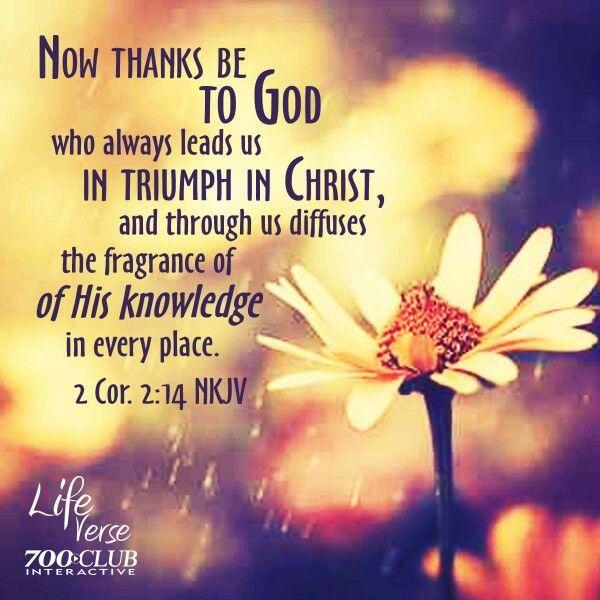 2 chron2:14.  !