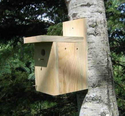 Plans Gratuits De Birdhouse Cabane Oiseaux Porches