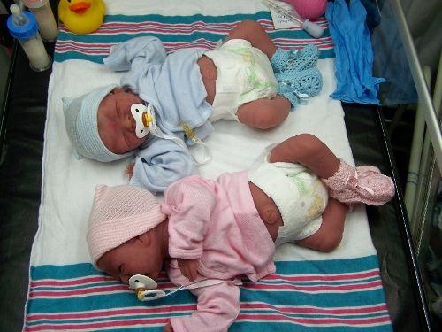 Reborn Baby Dolls Twins Silicone