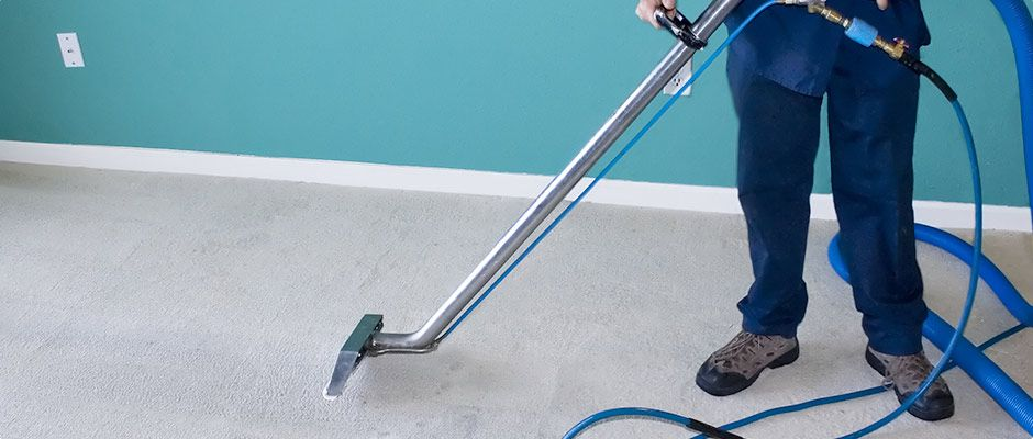 Fair Um Is The Best Carpet Cleaning Service And Pest Control Services In Sunshine Coast