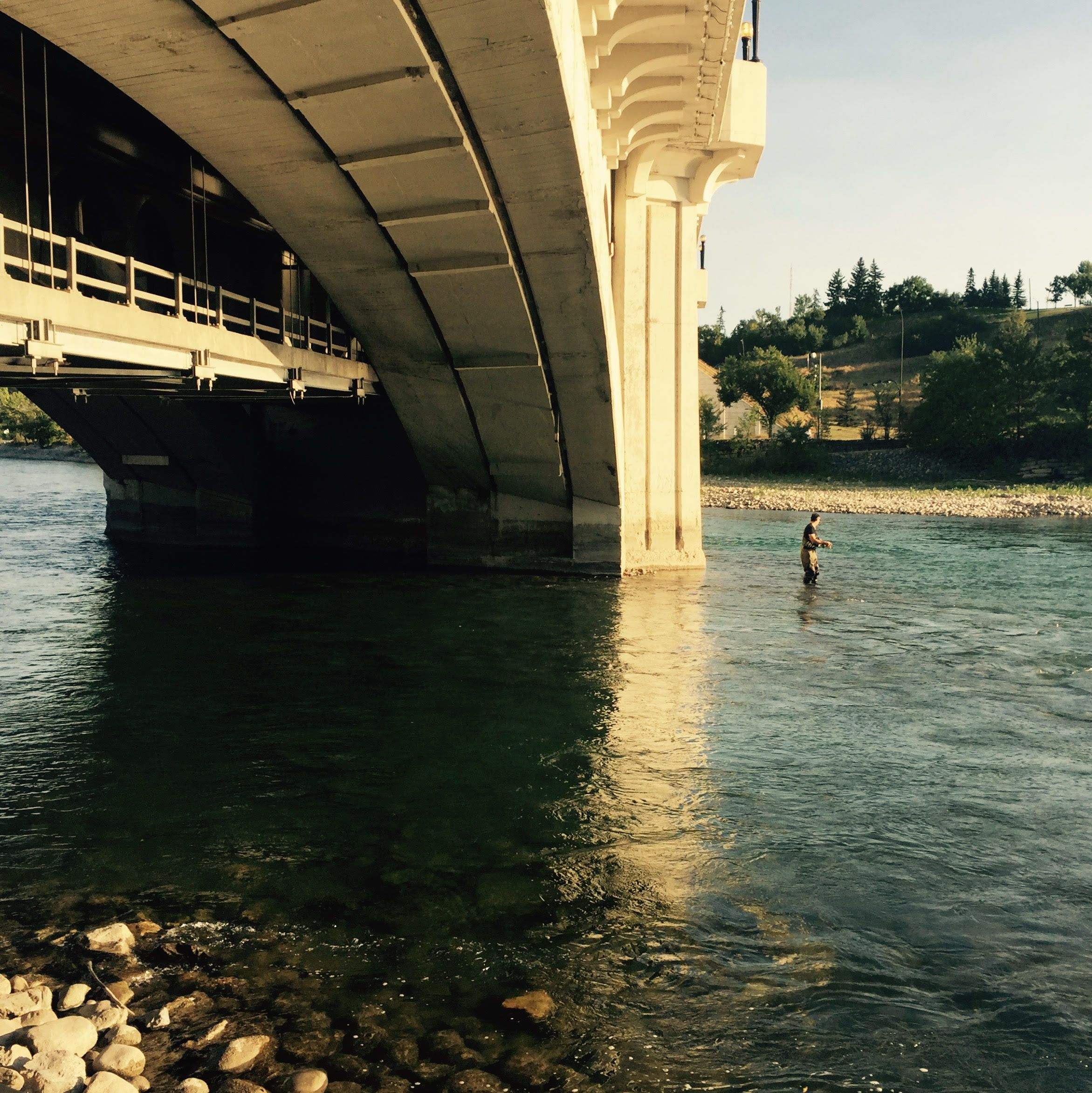A Guy Flyfishing Under The Centrestreetbridge This