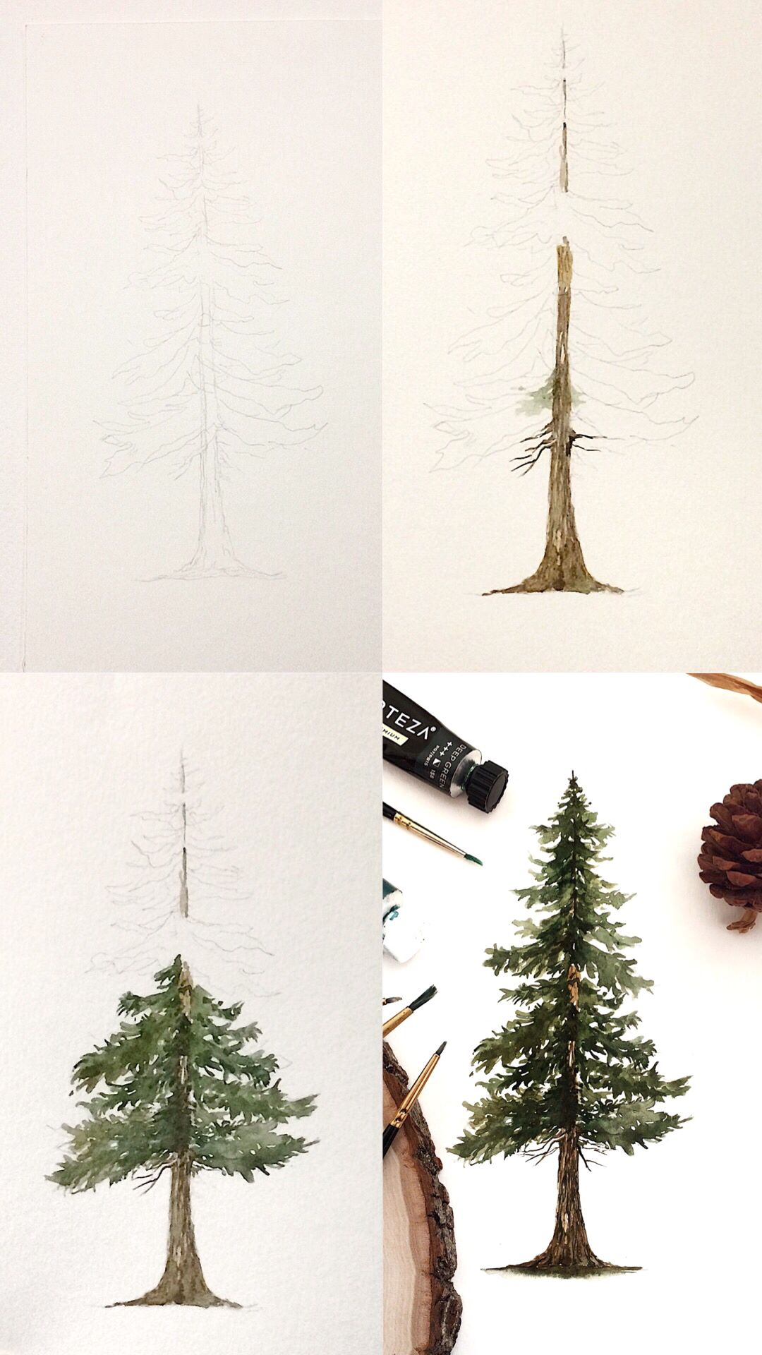 Watercolor Pine Tree Painting Tutorial With Step By Step Process