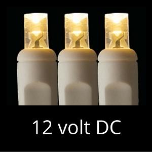 12 Volt Led Light Set Warm White On White Wire Led Lights Led Christmas Lights Warm White