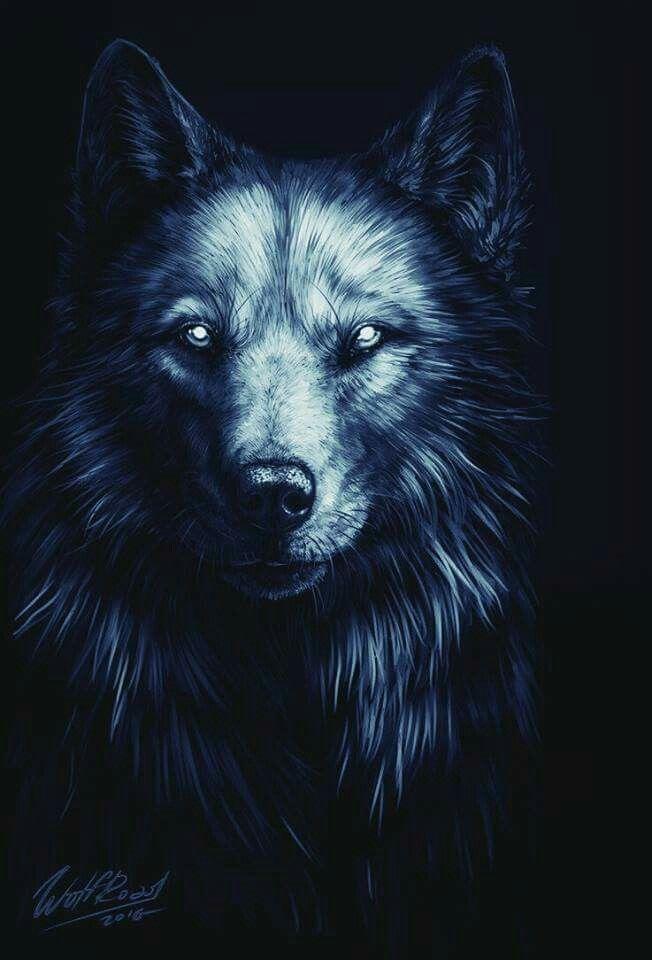 Pin By Lisa Potvin On Paranormalsupernatural Lobo Dibujo Lobos