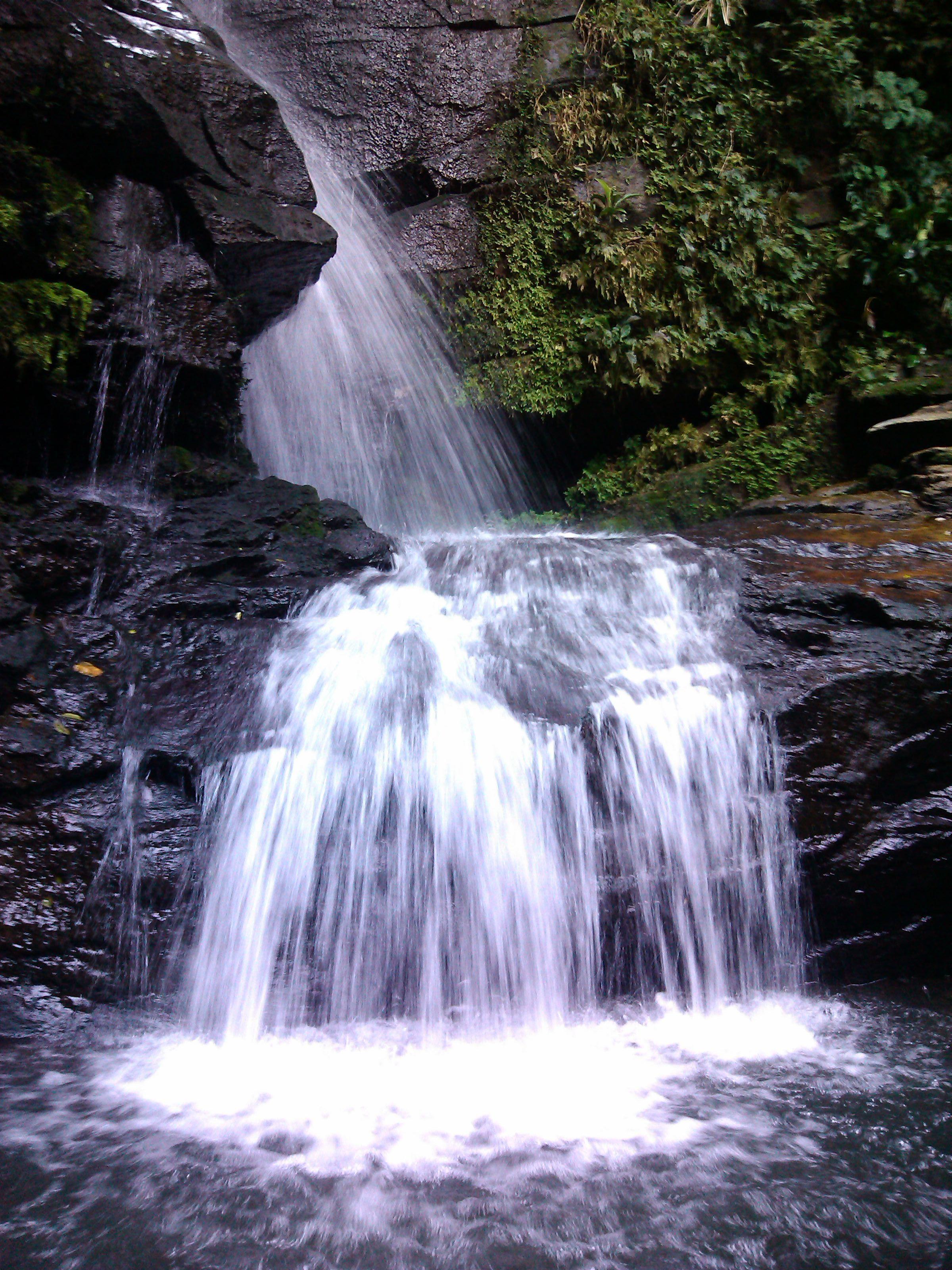 Alto Da Boa Vista Rj Brazil Rio De Janeiro Boa Vista Rio
