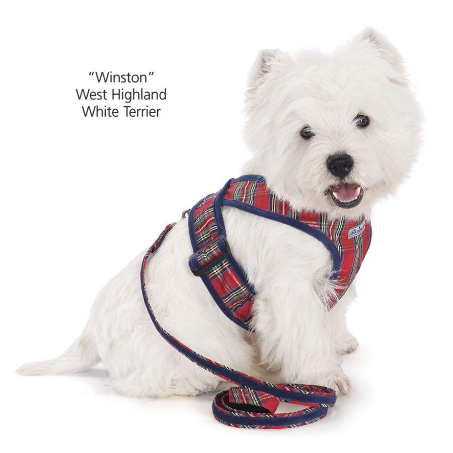 Tartan Plaid Matching Leash Dog Beds Dog Harnesses And Collars