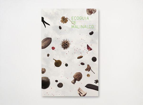 Ecoguia de Malinalco by Leo Calvillo, via Behance