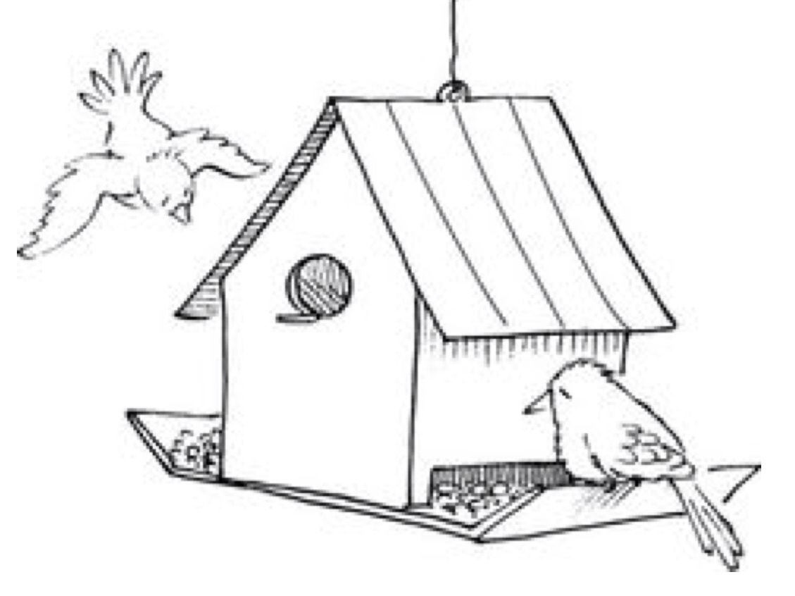 Bird Feeder 2 Day Elective Learn How To Make A Bird Feeder Out