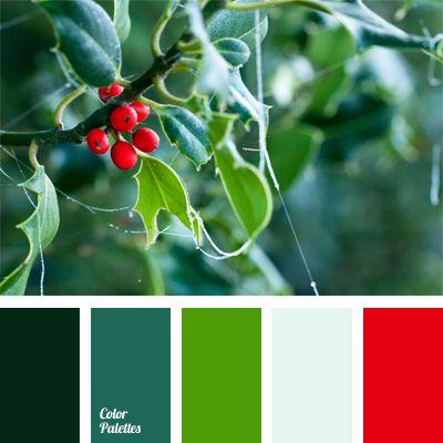 Color Palette 490 Winter Warm Colour Red