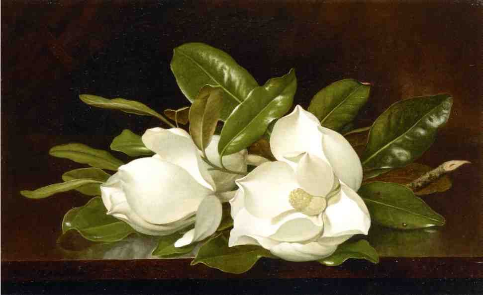 On A Wooden Table Oil On Canvas By Martin Johnson Heade 1819 Martin Johnson Heade Martin Johnson Diy Canvas Wall Art