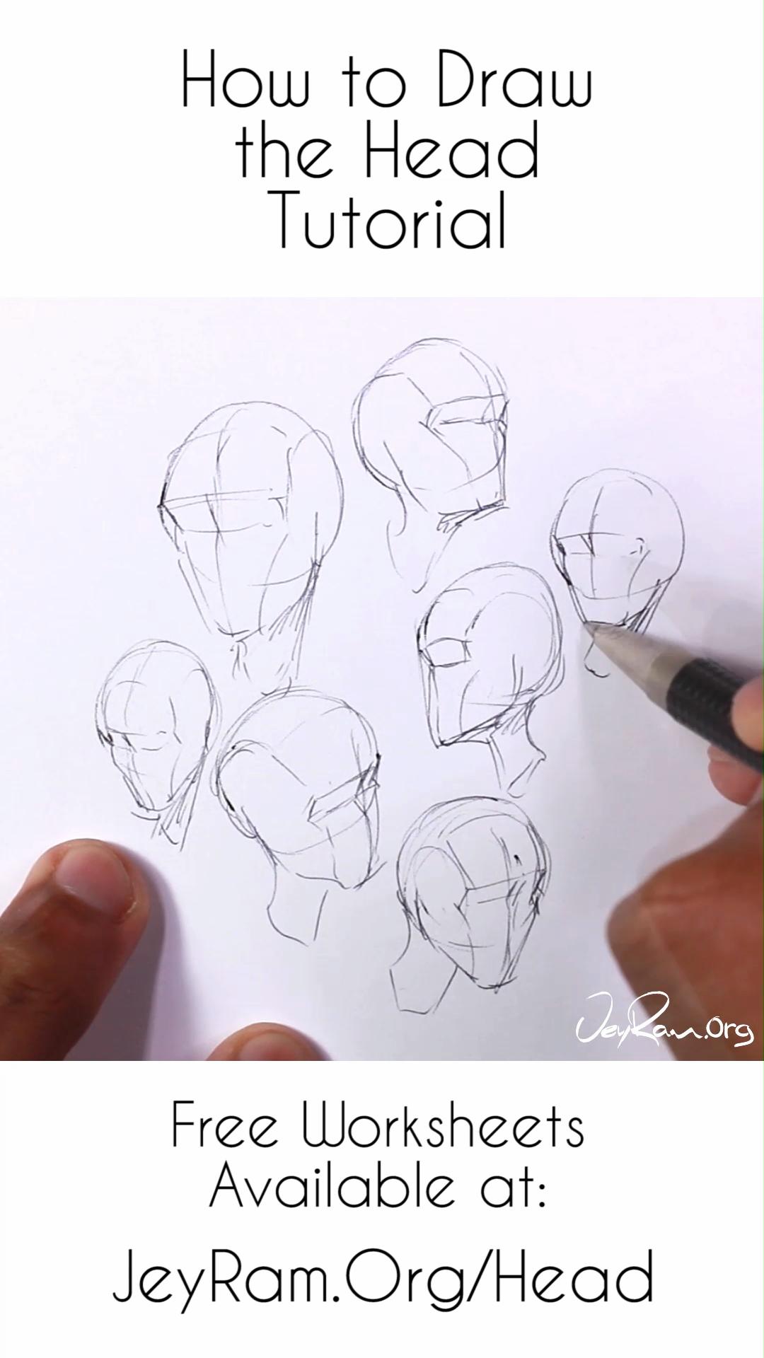 Como Dibujar La Cabecera Desde Cualquier Angulo Paso A Paso Tutorial Para Principiantes Como Dibujar Cosas Tutorial De Dibujo Dibujos Con Figuras