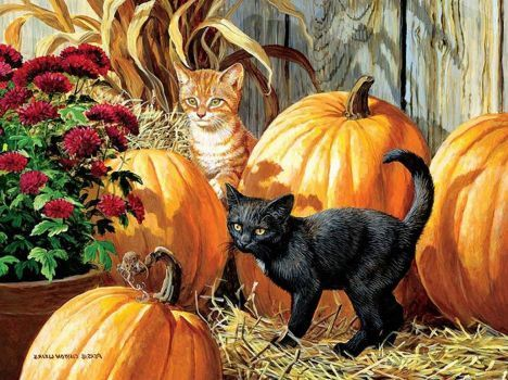 Cats and Pumpkins (221 pieces)
