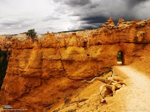 Bryan Fowler, Bryce Canyon National Park, Queens Garden Trail, Utah