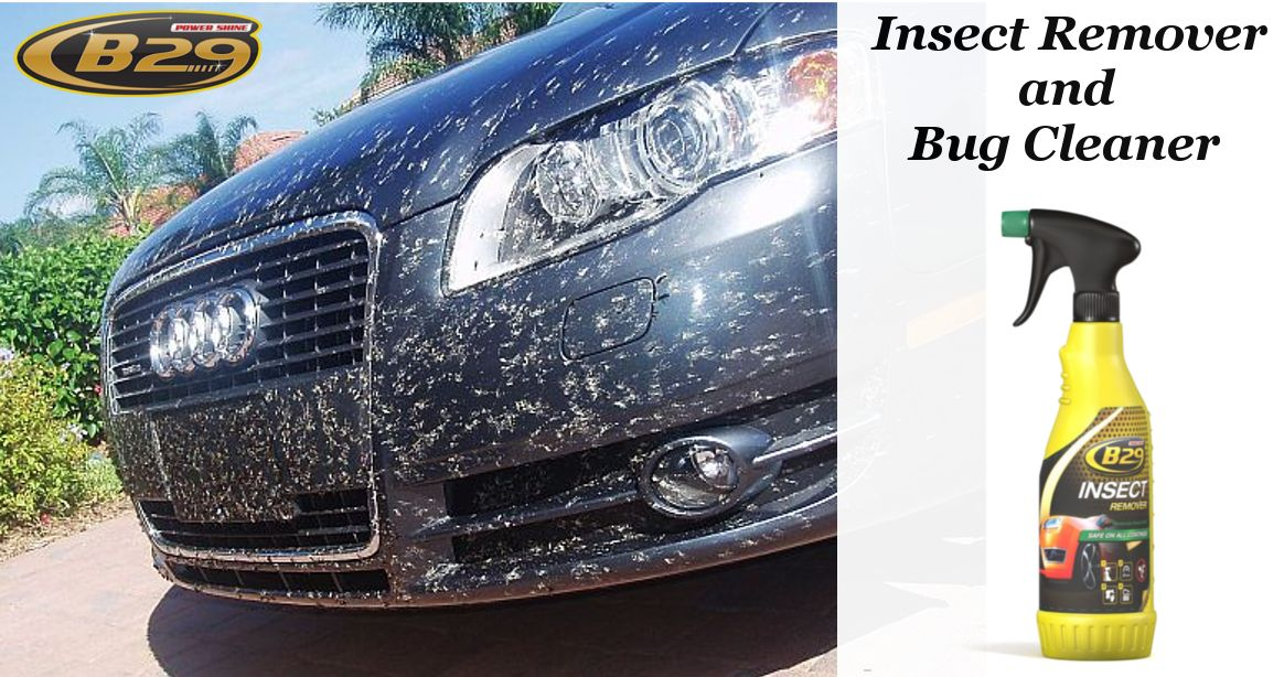 Get Online Insect Remover and Bug Cleaner for your car