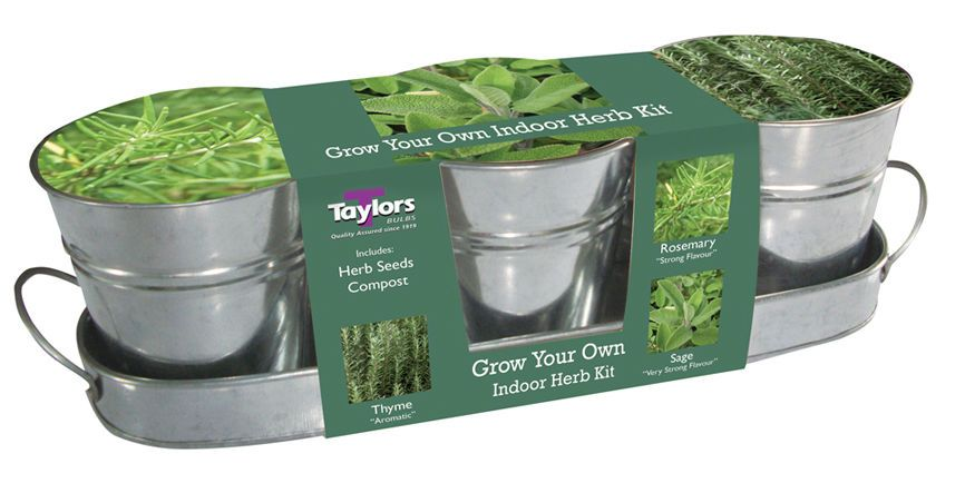 Taylors Windowsill Kitchen Herb Kit Rosemary Thyme Sage 3 Zinc Metal Pots  Tray