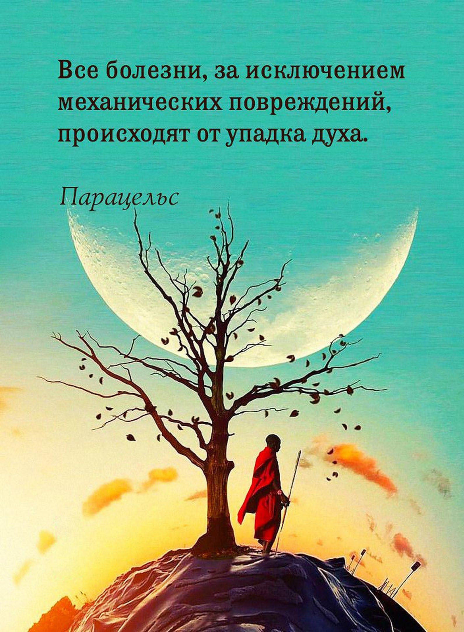 Открытке, открытки мудрые мысли о жизни