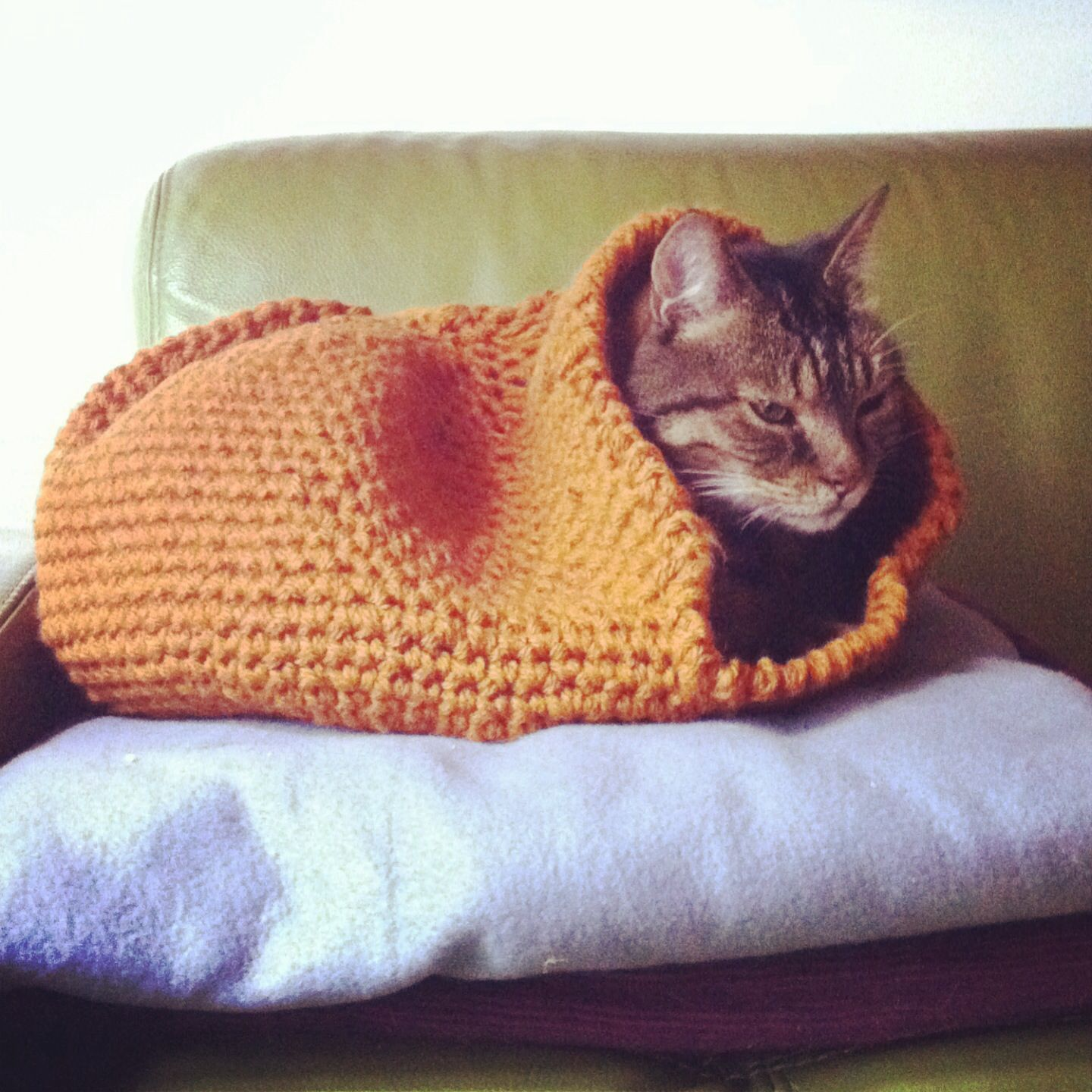 Crocheted cat cave I made for our cats. Success! Crochet