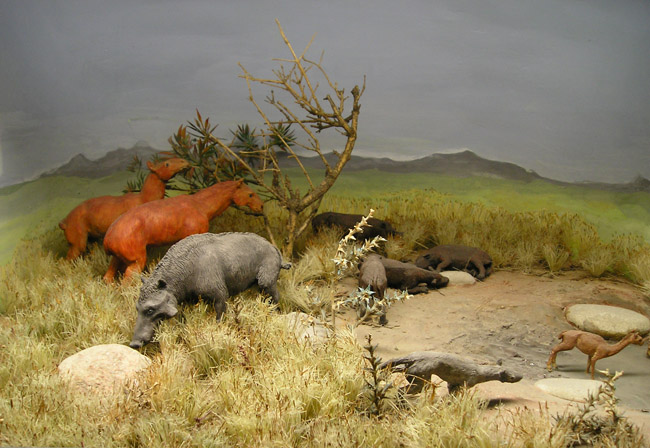 ROM-Miocene-Diorama3 - Neógeno - Wikipedia, la enciclopedia libre