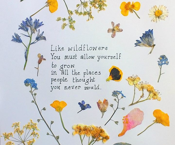 Pin By Julia Cerrato On Life In All Its Glory Flower Quotes Quotes About Flowers Blooming Wild Flower Quotes