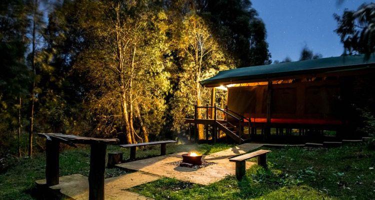 Achat/Vente magasin britannique élégant et gracieux Luxury Camping Sites in Cape Town - The Inside Guide ...