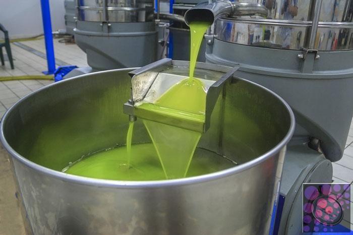 زيت زيتون بكر عصرة أولى على البارد درجة الحموضة أقل عن 2 Tuscan Olive Oil Olive Oil Oils
