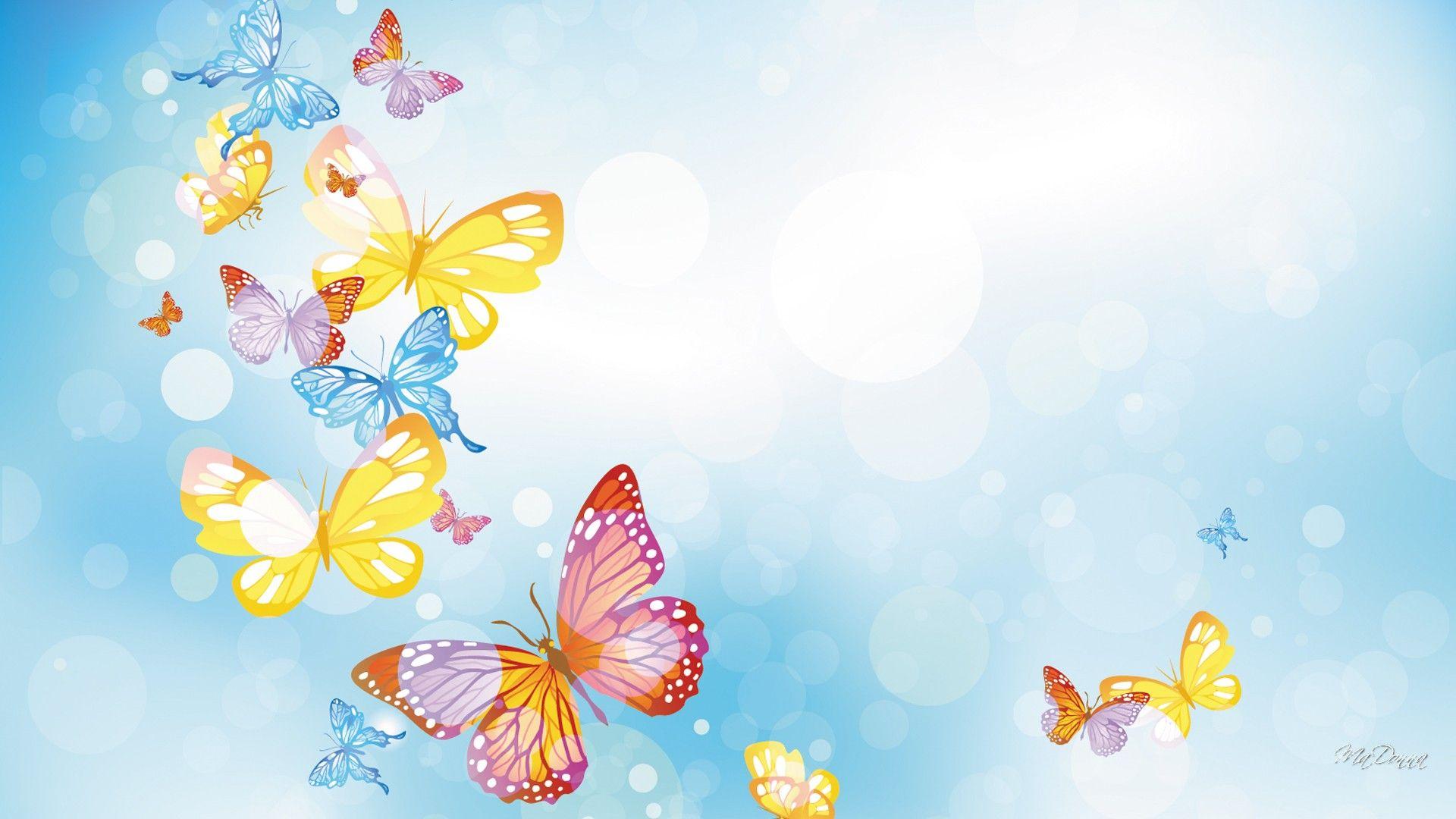 butterflies many hd desktop background wallpaper free