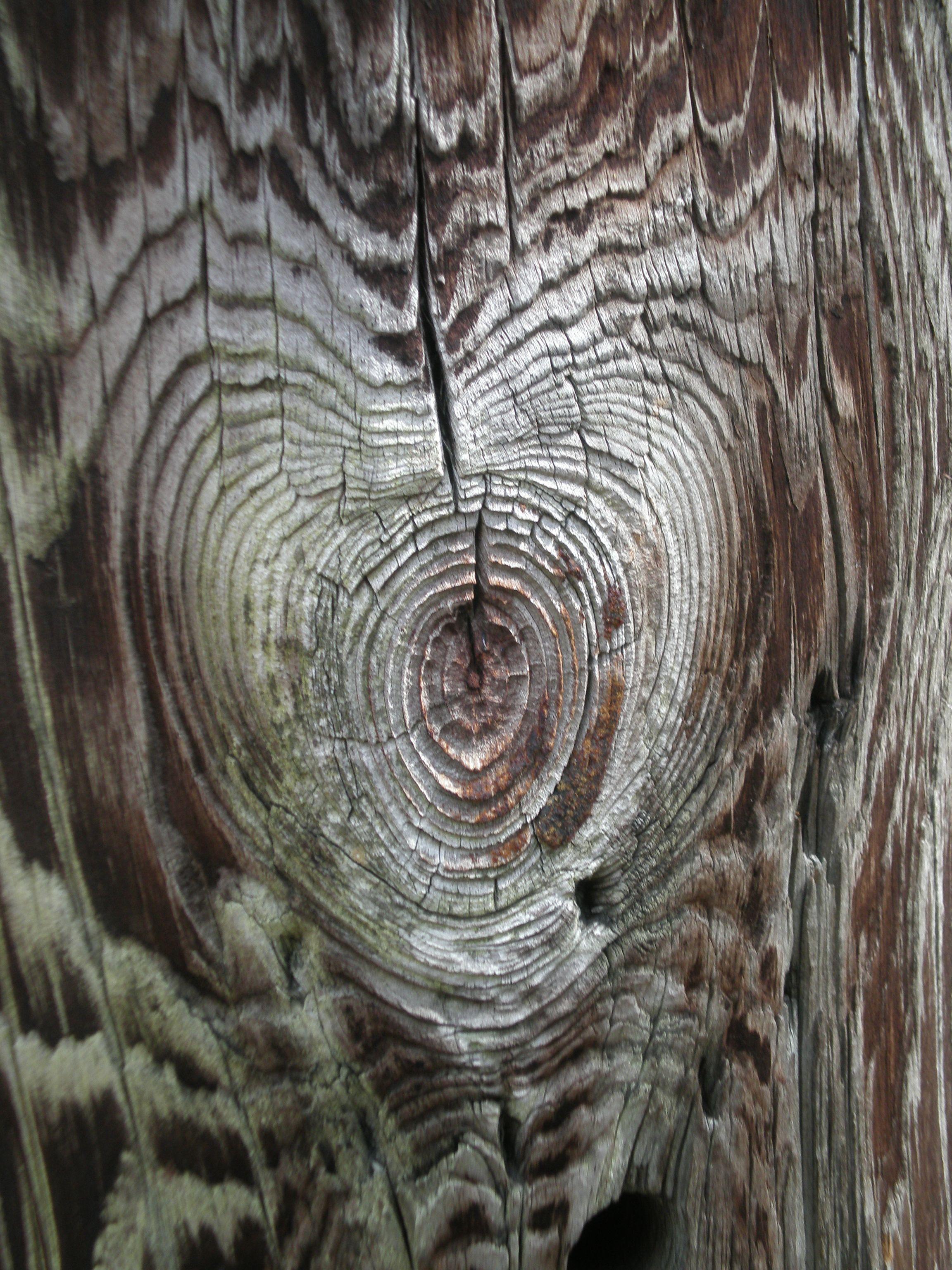 Natural Wood Heart