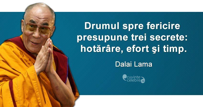 Drumul Spre Fericire Presupune Trei Secrete Hotărare Efort Si Timp Dalai Lama Spiritual Quotes Inspirational Quotes Dalai Lama