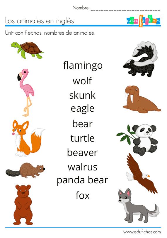 Animales En Inglés Vocabulario Ejercicios Flashcards Animales En Ingles Ingles Para Preescolar Nombres De Animales