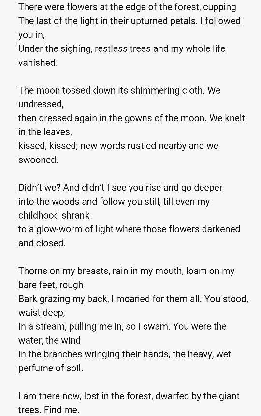 essay on poetry