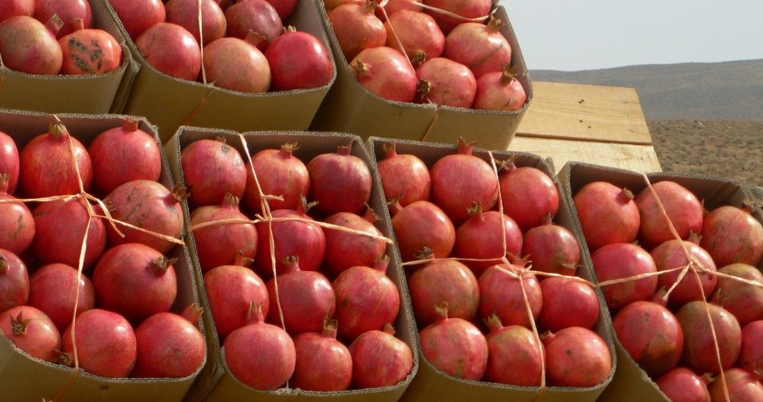 Persian Pomegranates - Iran is known as the largest producer of pomegranates. When you visit the country the popularity of the fruit becomes very obvious.