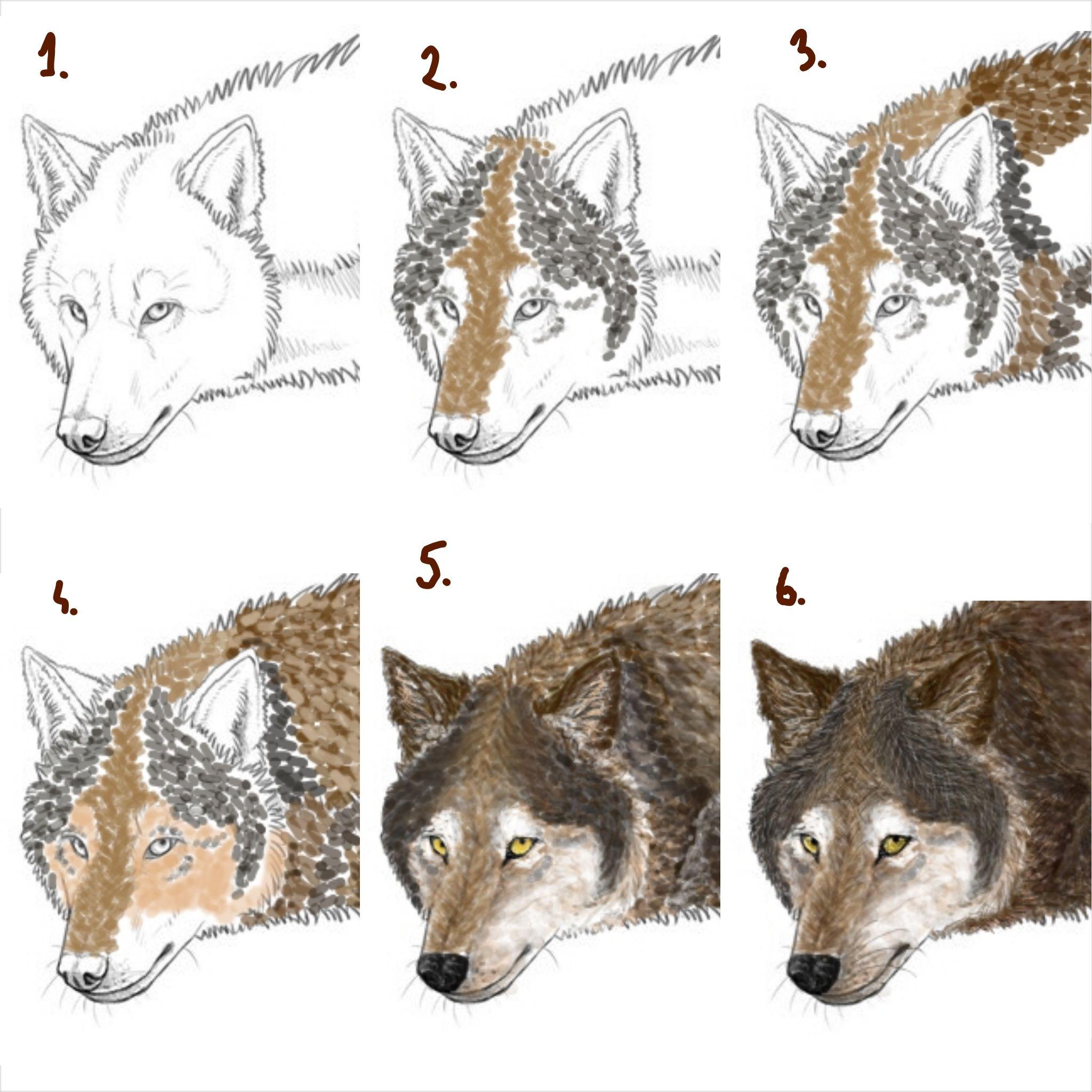 Picsart Painting Tutorialwolf By Thedeadlydragoniantart On  @deviantart · Wolf Paintingpainting Stepsinspirational Poemspainting  Tutorialsdrawing