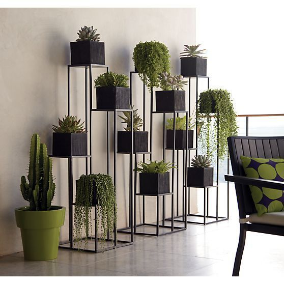 Add Interest with Plant Stands: Fun plant stands are an easy way to add an extra dash of style to your plant collection!: