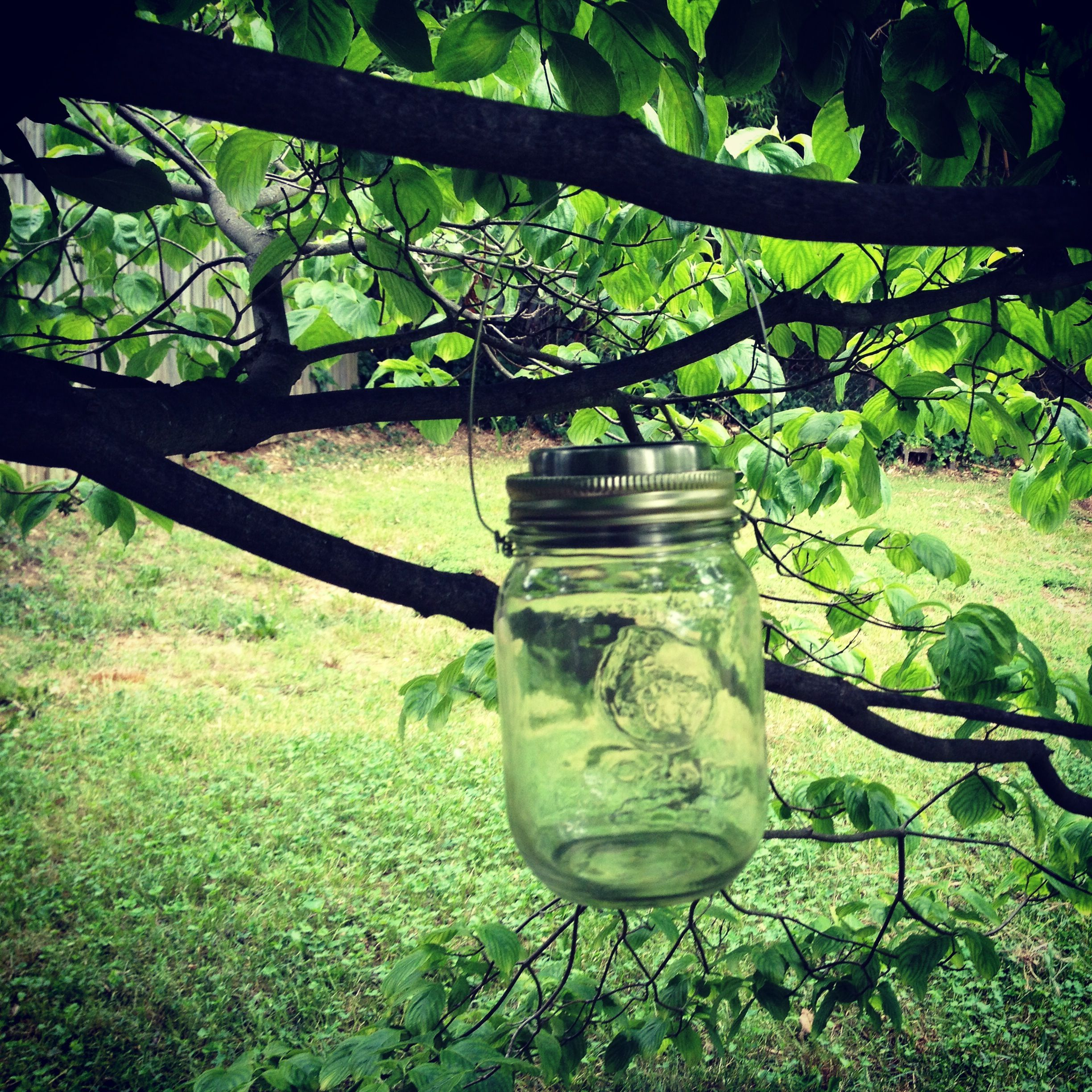 Solar Jars Solar Jars Solar Lights For The Garden Pinterest Vasi