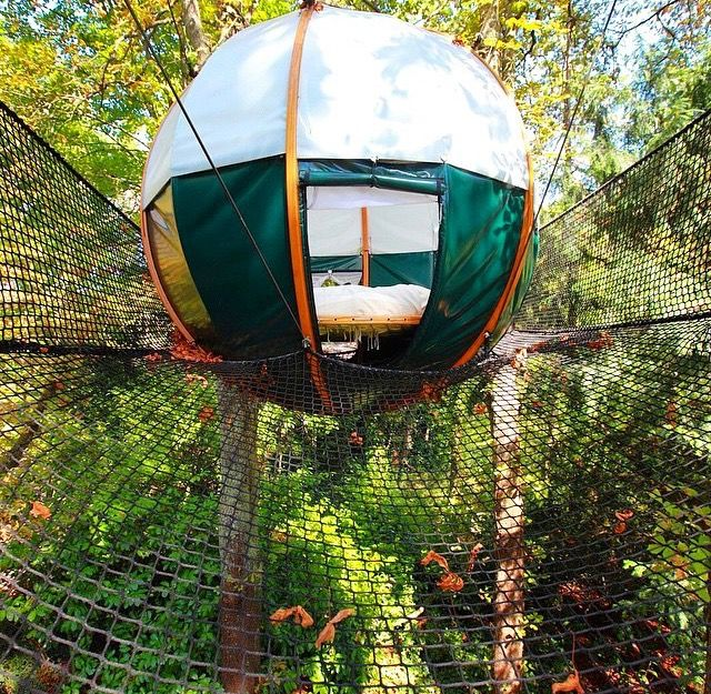 Insane Tree Houses treehouse + trampoline + sphere + tent = this | humble abode
