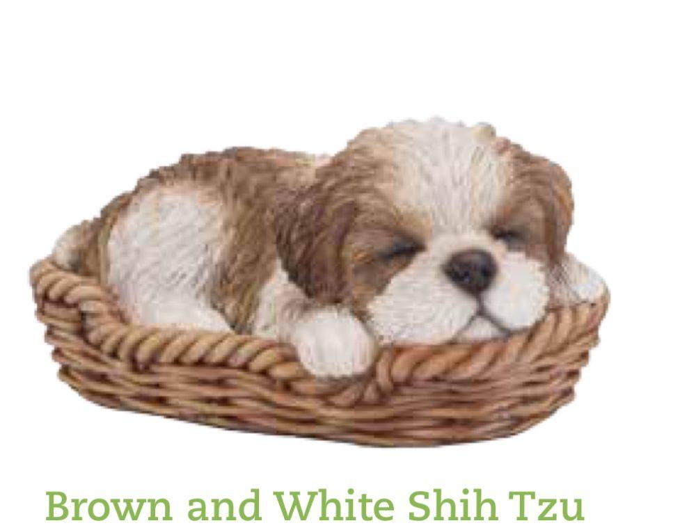 Shih Tzu Pet Pal Animal Statue Shih Tzu Puppy Shih Tzu Dog