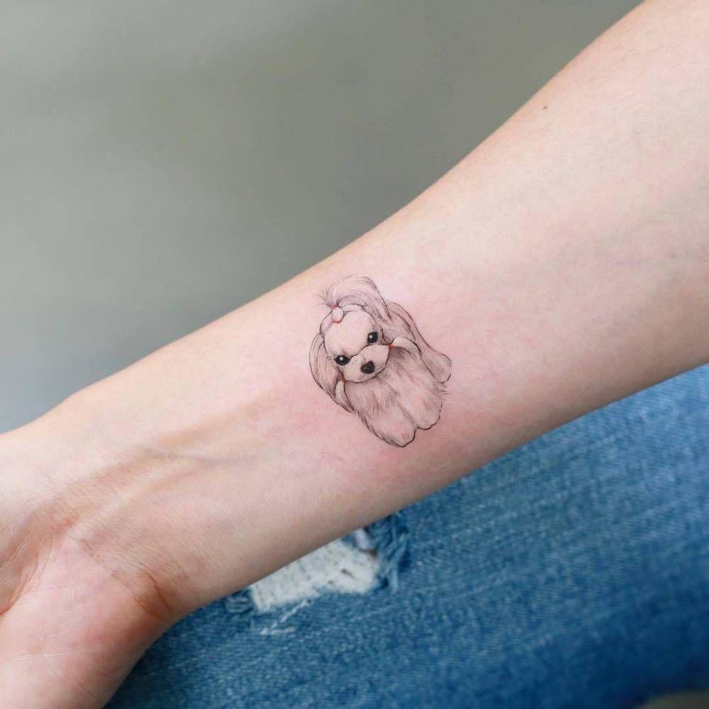 Illustrative Maltese Tattoo On The Right Inner Forearm Dog