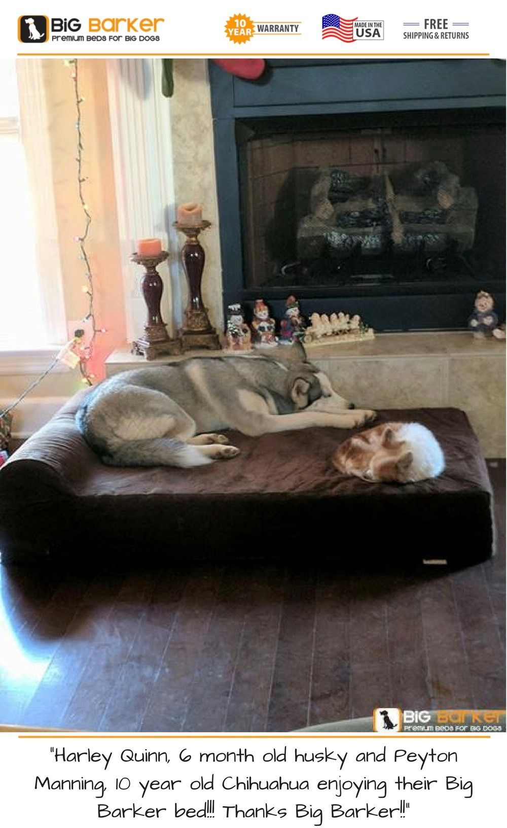 Pin by Florence Kim on Dog Photography Dog bed luxury