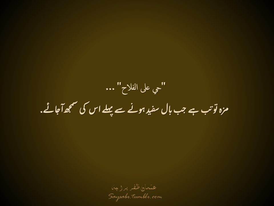 Saysabr Islamic Quotes Reality Quotes Sufi Quotes